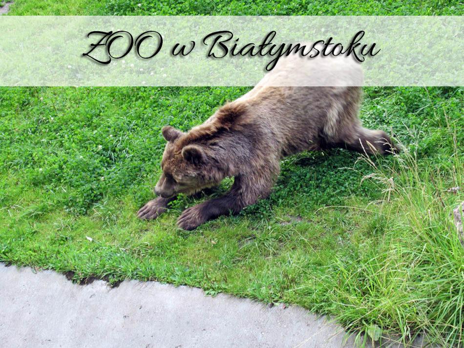 ZOO-w-Bialymstoku