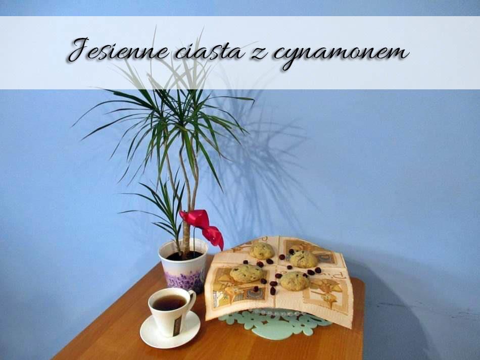 Jesienne-ciasta-z-cynamonem