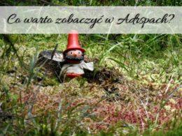 Co warto zobaczyć w Adrspach? Skalne Miasto w Czechach