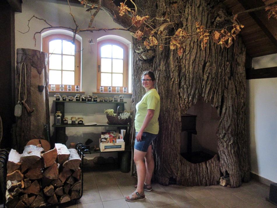 Ośrodek Edukacji Przyrodniczo-Leśnej w Woziwodzie