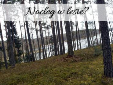 Nocleg w lesie? Tylko tam najlepiej wypoczywamy
