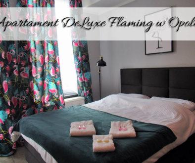 apartament-deluxe-flaming-w-opolu
