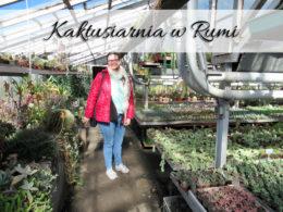 Kaktusiarnia w Rumi. Nieoczywista atrakcja na mapie miasta