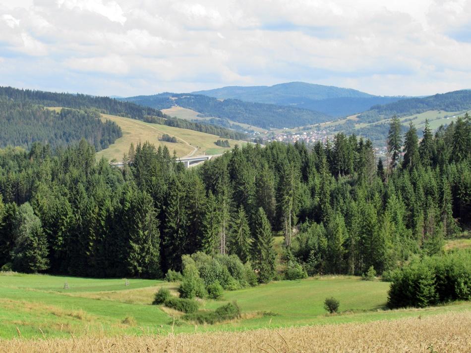 Trójstyk granic w Jaworzynce-Trzycatku