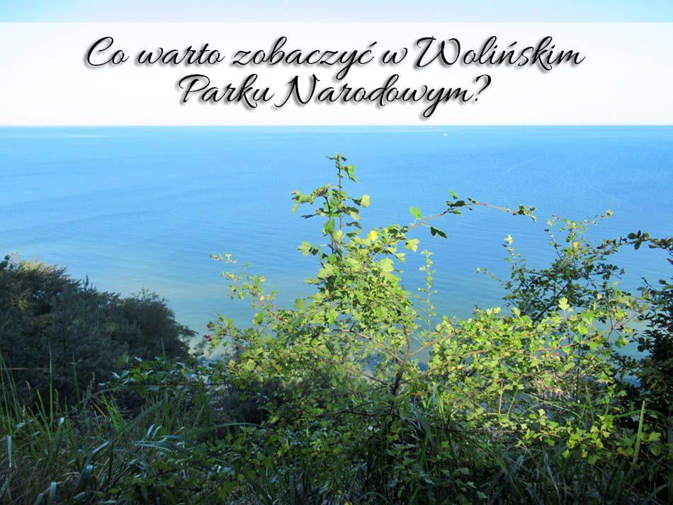 co-warto-zobaczyc-w-wolinskim-parku-narodowym