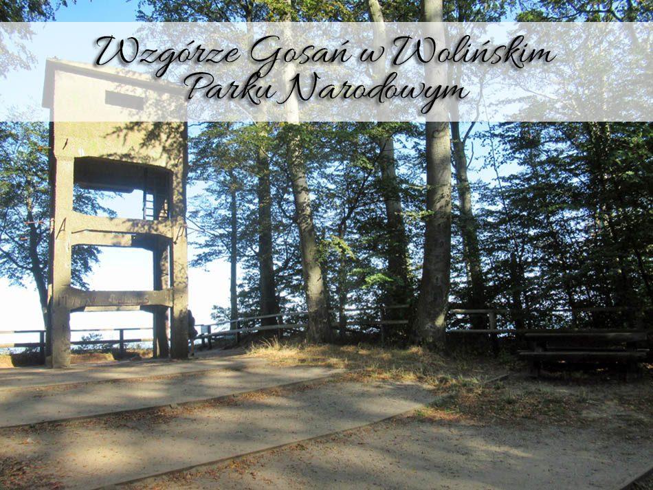 wzgorze-gosan-w-wolinskim-parku-narodowym