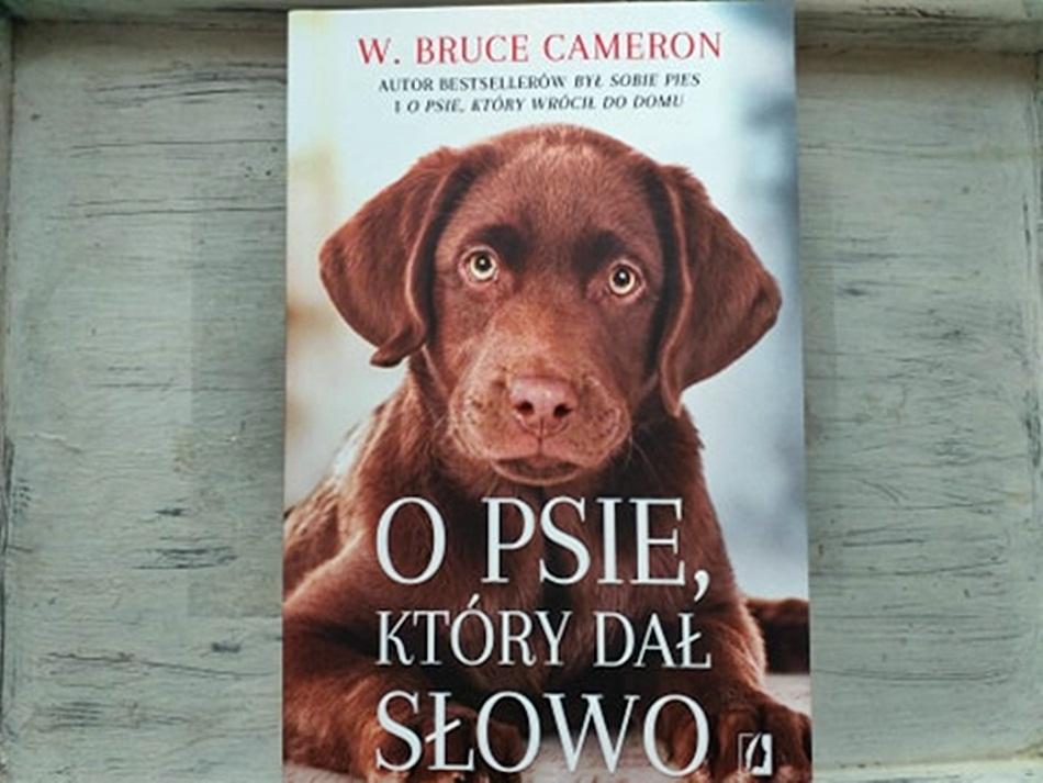""",,O psie, który dał słowo"""" W. Bruce Cameron"""