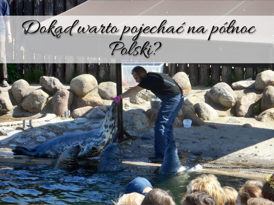 Dokąd warto pojechać na północ Polski