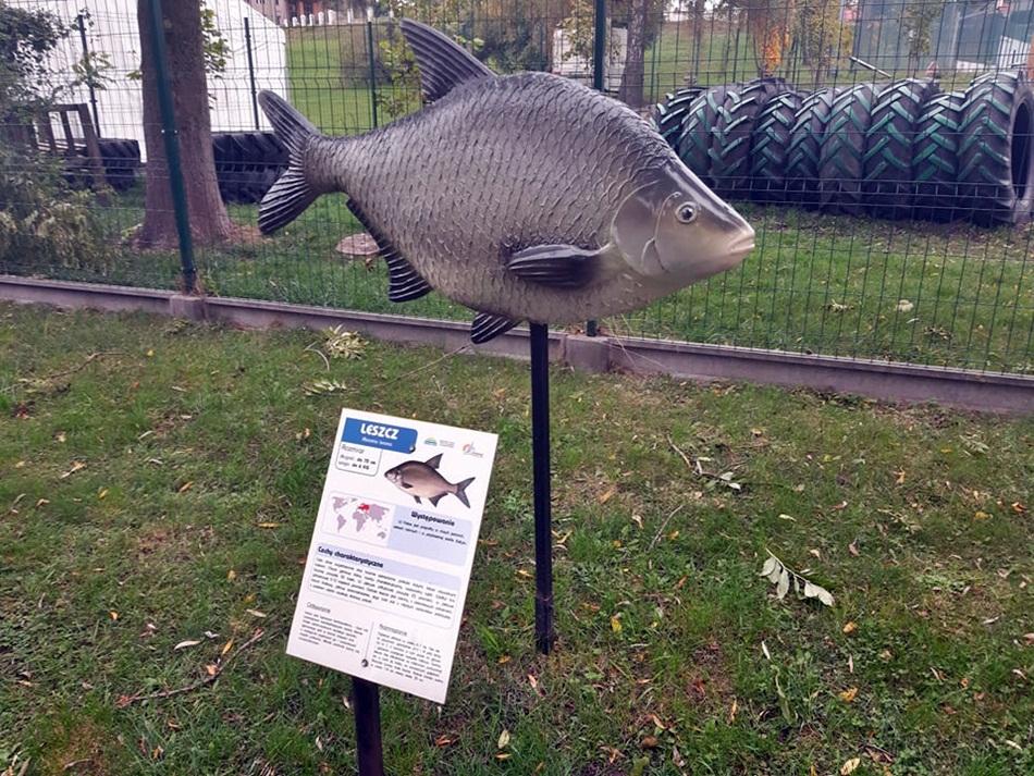 Park Miniatur - Ryby w Powidzu