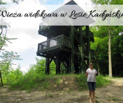 Wieża widokowa w Lesie Kadyńskim